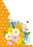 Flowers and honeycomb Royalty Free Stock Photography