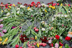Flowers in honor of those killed in the Maidan in Kiev Stock Photo