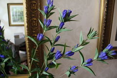 Flowers on the hotel room background. Blue Flowers on the hotel room background Stock Photos