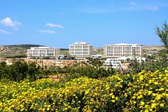 Flowers and hotels at Golden Bay, Malta. Royalty Free Stock Photography