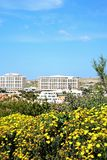 Flowers and hotels at Golden Bay, Malta. Stock Photography