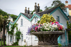 Flowers and a house. Planter of flowers in front of a house in Portmeirion Royalty Free Stock Image