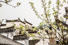 Flowers and houses Royalty Free Stock Images
