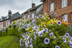 Flowers and houses in Lyons la Foret Stock Photography