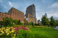Flowers in Hudson River Park and buildings in Tribeca, in Manhattan, New York City.  royalty free stock photo