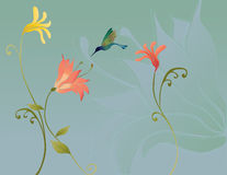 Flowers with hummingbird Royalty Free Stock Photo
