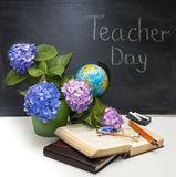 Flowers hydrangeas and school subjects. Royalty Free Stock Image