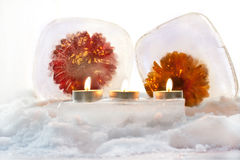 Flowers and ice. Flowers gerbera on the ice with three candles Royalty Free Stock Photo