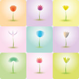 Flowers icon set, nature background Royalty Free Stock Image