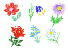 Flowers icons Stock Images