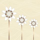 FLOWERS ICONS Royalty Free Stock Photo
