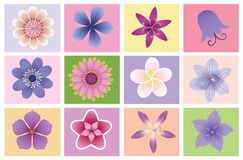 Flowers icons. Stock Photography