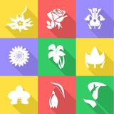 The flowers icons Stock Photography