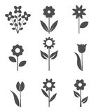 Flowers icons Royalty Free Stock Images