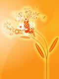 Flowers illustration Stock Photos