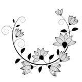 flowers image Стоковые Изображения