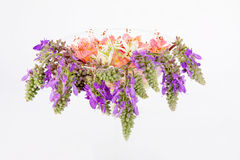 Flowers In A Glass Vase Royalty Free Stock Image