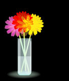 Flowers In The Vase Royalty Free Stock Image