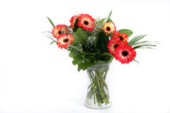 Free Flowers In Vase Stock Photos - 5254223