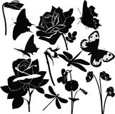 Flowers insect butterfly violet rose stock illustration