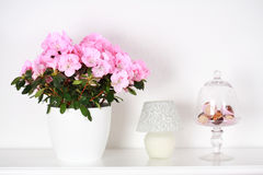 Flowers in interior Royalty Free Stock Photos