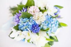 Flowers isolated on white background Stock Photo