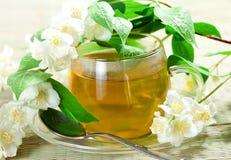 Flowers jasmine and tea royalty free stock photos