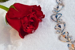 Flowers and jeweller Stock Photography