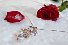 Flowers and jeweller Stock Photos