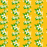 Flowers jointless pattern. Floral decorative pattern with camomiles Royalty Free Stock Photography