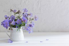 Flowers in jug on white background Royalty Free Stock Image