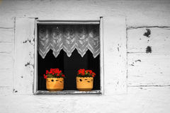 Flowers in the jugs. Two jugs with red flowers in the window of an old house, now a museum in the city of Curitiba, Brazil Royalty Free Stock Image