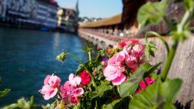 Flowers on Kapellbrücke Stock Image