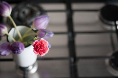 Flowers in the kitchen Stock Photography