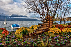 Flowers and Lake geneva Stock Photography