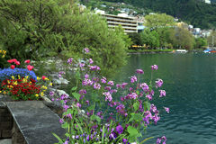 Flowers and Lake Geneva, Montreux Stock Images