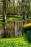 Flowers by the lake at Keukenhof Gardens, Lisse, South Holland. Photographed in HDR high dynamic range. Vibrant colour flowers on display at Keukenhof Gardens royalty free stock image