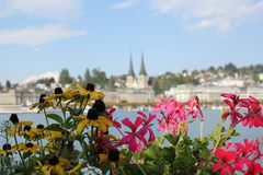 Flowers on Lake Lucerne. Flowers and the town of Lucerne, Switzerland, overlooking the lake Royalty Free Stock Photos
