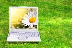 Flowers and laptop Royalty Free Stock Photos