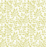 Flowers leaf seamless pattern Royalty Free Stock Images