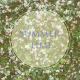 Flowers and leafes of jasmine outdoor with message Summer time. royalty free stock photo