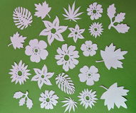 Flowers and leafs pattern. Paper cutting royalty free stock image