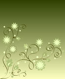 Flowers and leaves. Design on green background Royalty Free Stock Photos