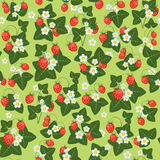 Flowers leaves and berries of strawberry. Bushes of strawberries, flowers leaves and berries of strawberry, Vector seamless pattern Royalty Free Stock Photo