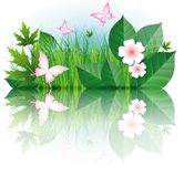 Flowers, leaves, grass, butterflies Stock Photo