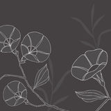Flowers and Leaves on Grey Background. Hand-drawn Flowers and Leaves Vector Illustration Royalty Free Stock Images