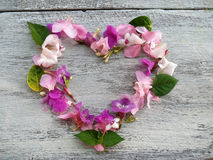 Flowers and leaves heart shape for valentine background Royalty Free Stock Image