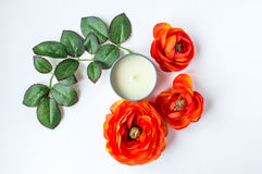 Flowers and leaves. Orange flowers with candle and leaves on white background stock photos