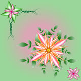 Flowers and Leaves vector illustration Royalty Free Stock Photography