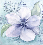 Flowers and leaves.Watercolor. Wallpaper. Stock Photo